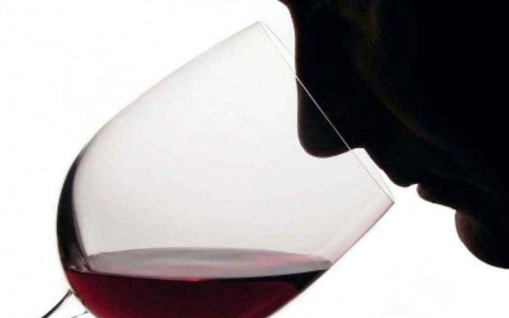 cata el vino