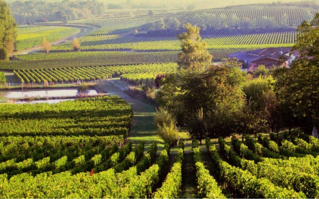 mejores destinos para el vino