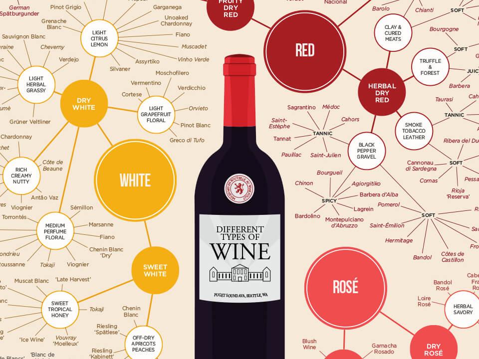 Los diferentes tipos de vino (infografía) |  Locura del vino