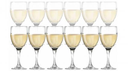 DailywareTM Juego de 12 copas de vino blanco