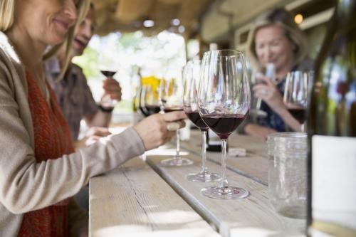 Copas de vino tinto en una cata