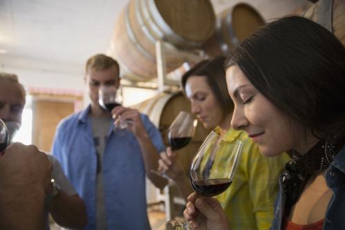 cata de vinos en la sala de barricas
