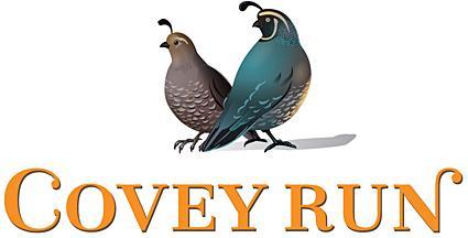 Logotipo de Cover Run