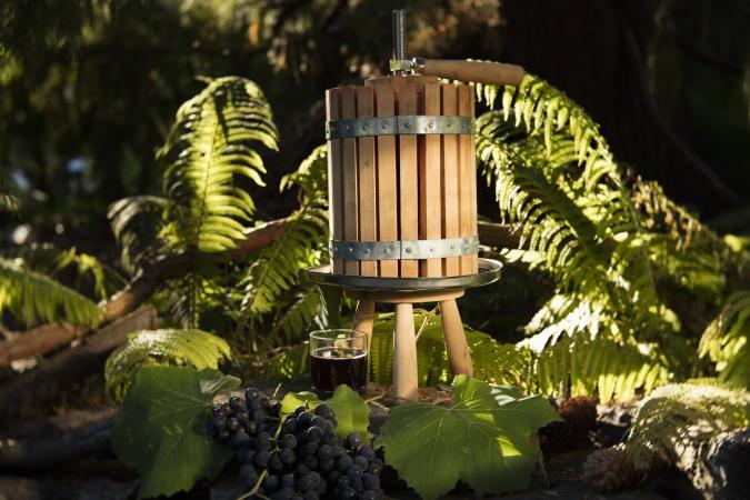 Prensa de cesta de uva