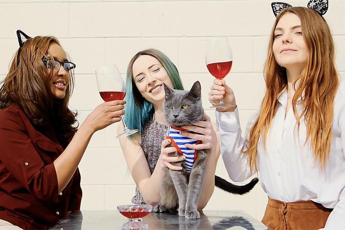 chicas y gato