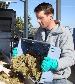 James Michael, experto en vinos