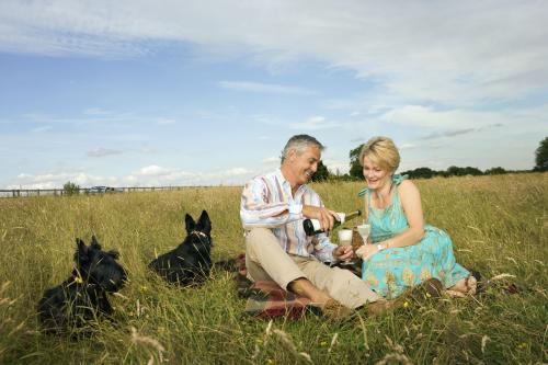 Par verter vino en un picnic
