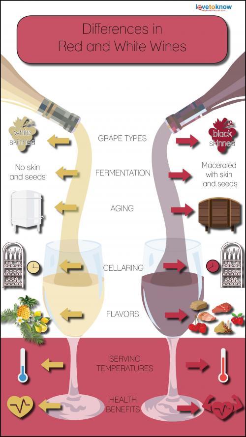 diagrama comparativo de diferencias en vinos tintos y blancos