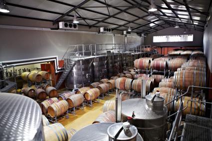 Barriles de vino y recipientes de fermentación en una fábrica.