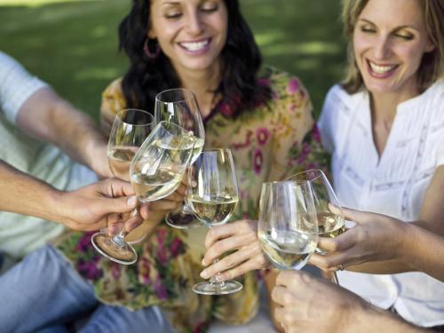 friemds con vino blanco