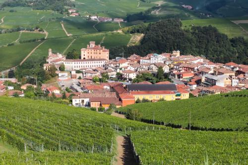 Viñedos de la comarca de Barolo
