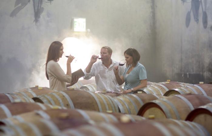 Gente degustando vino en bodega.