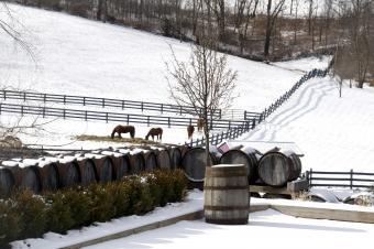 Bodega de Ohio en invierno