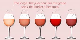 Sabores y características del vino rosado